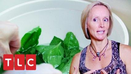 Mulher serve folhas silvestres como salada e deixa companheiro sem bebida | Muquiranas | TLC Brasil