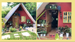 For P350,000, This Family Built a Tiny House With an Indoor Pool, Mini Forest, and Tree House