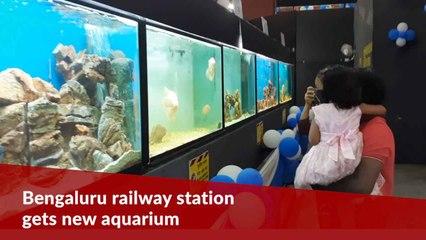 Bengaluru's KSR railway station gets first-of-its kind tunnel aquarium