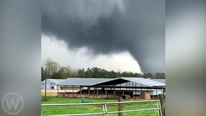 TEXAS TORNADO FEST - July 6, 2021 Scary Tornado in Alabama, USA (Mar 18, 2021) Disaster is caught on camera-