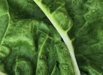 Un plat de ces aliments par jour peut réduire le risque de maladie cardiaque
