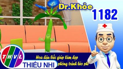 Dr. Khỏe - Tập 1182: Hoa đậu biếc giúp làm đẹp phòng tránh béo phì