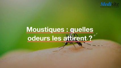 Moustiques : quelles odeurs les attirent ?