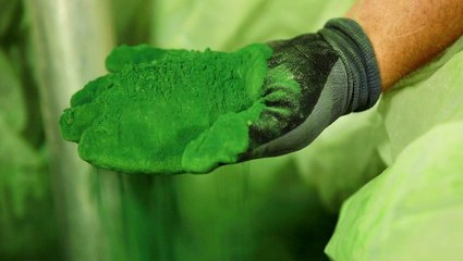 How one startup is turning harmful algae into plastic shoe parts