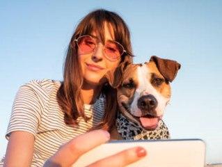 """Tierische Hitzephase: Das musst du über die """"Hundstage"""" wissen"""