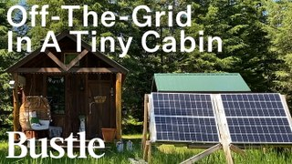 Living Alone In A TINY Cabin In The Woods