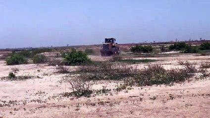 Thiès : La Dscos détruit des bornes sur plus de 300 hectares à Thiawone
