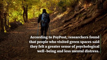 Beeing in Nature is Linked to Improved Mental Health