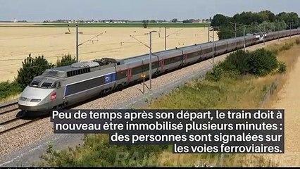 Près de 11 heures pour rallier Toulouse à Paris : une nuit en enfer pour des centaines de passagers d'un train_IN