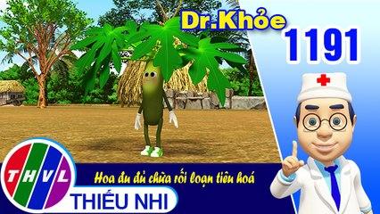 Dr. Khỏe - Tập 1191: Hoa đu đủ chữa rối loạn tiêu hoá