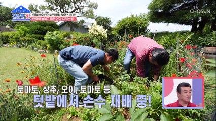 풍경과 맛에 취한다 입맛 돋우는 건강 밥상^^ TV CHOSUN 20210719 방송