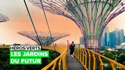 Héros verts : jardin du futur