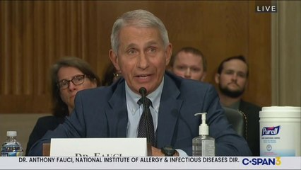 Dr Fauci Torches Rand Paul 'You Do Not Know What You're Talking About!'