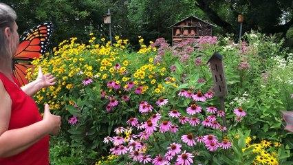 Un jardin des monarques à Les Coteaux