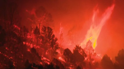 Le « Tamarack Fire » se propage de la Californie au Nevada