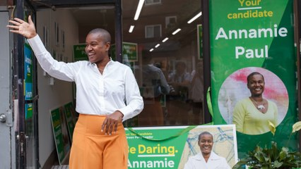 Annamie Paul says 'small group' of party execs behind court case against Green leader