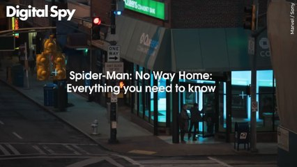 Spiderman No Way Home: Everything You Need To Know