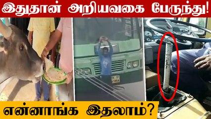 hotelக்கு தினமும் புரோட்டா உண்ண வரும் காளை | Oneindia Tamil