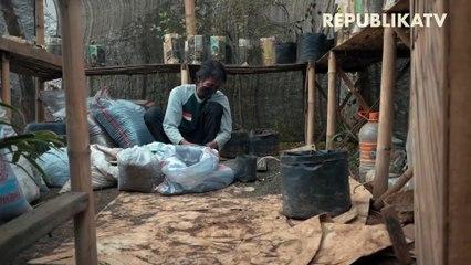 Sedekah Benih, Siasat Penuhi Kebutuhan Dapur Saat Pandemi