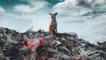 Recycling plastic into digital tokens; Haggai is patently disrupting plastics