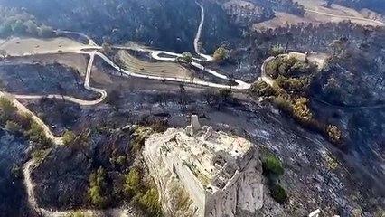 La destrucció causada per l'incendi de la Conca de Barberà i l'Anoia, a vista de dron
