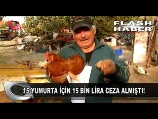 15 Yumurta İçin 15 Bin Lira Ceza!