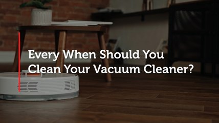 Every When Should You Clean Your Vacuum Cleaner