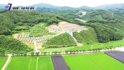 태양광 발전 시설로 인해 피해 받고 있는 주민들.. TV CHOSUN 210729 방송