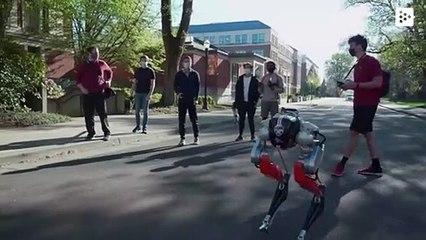 Cassie, el robot bípedo que recorre 5 kilómetros por primera vez en EE. UU.