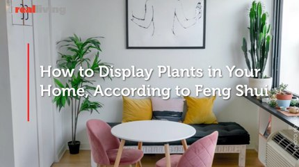 How to Display Plants in Your Home, According to Feng Shui