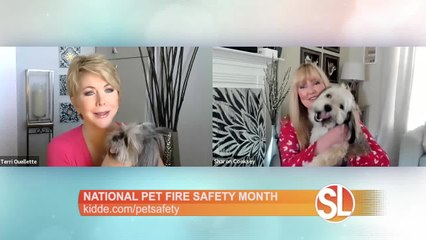 Kidde has tips in honor of Pet Fire Safety Month