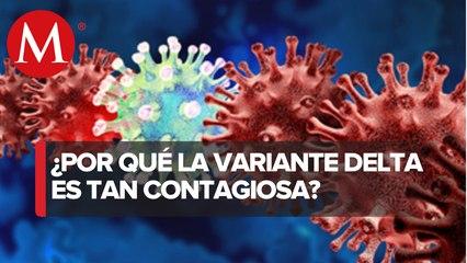 Variante Delta de covid-19 es tan contagiosa como la varicela o la gripa, advierten expertos