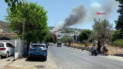 Bodrum'da bir yangın daha