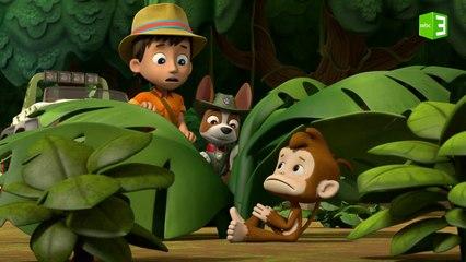 شئ غريب يزعج حيوانات الغابة