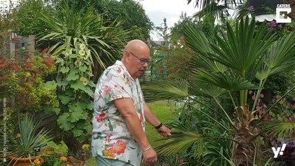 In diesem tropischen Garten stecken 25 Jahre Arbeit