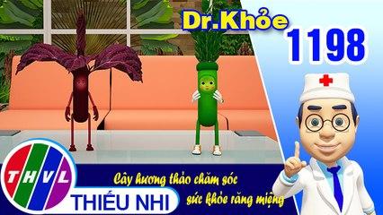 Dr. Khỏe - Tập 1198: Cây hương thảo chăm sóc sức khỏe răng miệng