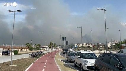La morsa dei roghi: a Pescara brucia la pineta, fuga dalle spiagge