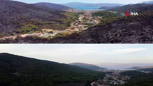 Marmaris'in İçmeler Mahallesi'nin yangından önceki ve sonraki hali
