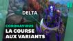 Covid-19: Pourquoi certains variants s'imposent et d'autres non? (expliqué par les jeux vidéo)