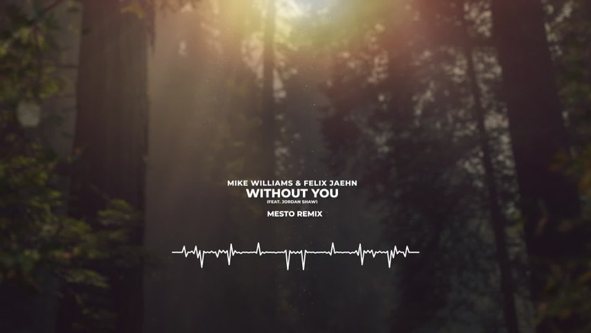 Mike Williams - Without You