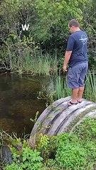 Visite surprise pendant une partie de pêche