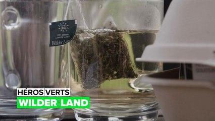 Héros verts : Wilder Land