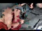 Travis Pastrana - Free Fall