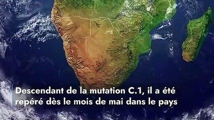 Covid-19 : le C.1.2., nouveau variant sud-africain qui inquiète les autorités !
