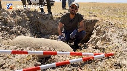 Logran recuperar una pieza arqueológica singular del interior del Embalse de Valdecañas
