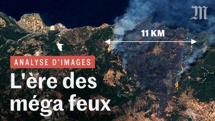 Incendies géants : pourquoi les feux de forêt sont de plus en plus violents