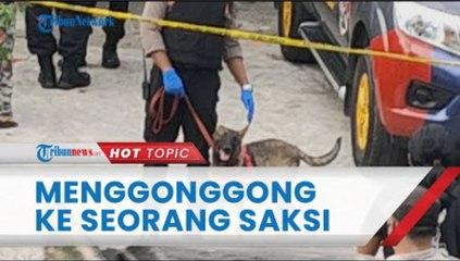 Anjing Pelacak Menggonggong ke Seorang Saksi saat Olah TKP Pembunuhan Subang, Ini Kata Kuasa Hukum