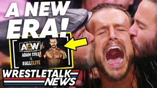 Adam Cole & Daniel Bryan To AEW CONFIRMED! CM Punk RETURN! AEW All Out 2021 Review   WrestleTalk