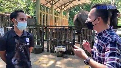 Travel Maya Sinarplus : Zoo Melaka | Bahagian Kedua