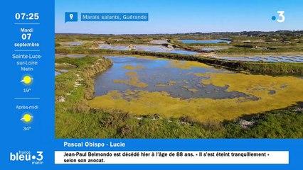 07/09/2021 - Le 6/9 de France Bleu Loire Océan en vidéo